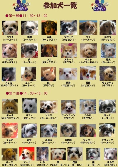 2011,1 - コピー.jpg