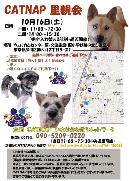 poster2_20101006233449.jpg