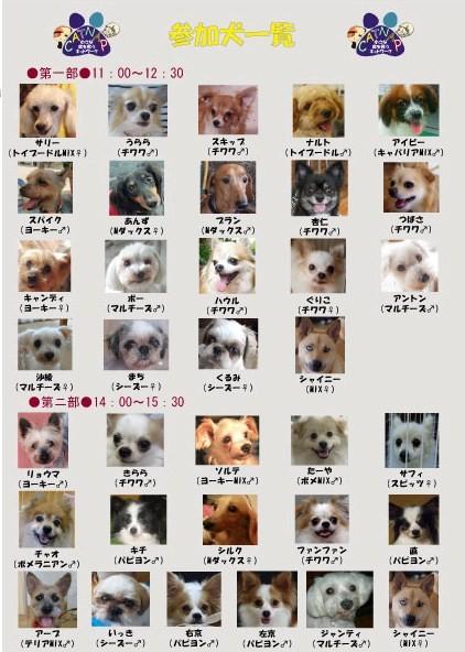 poster2_20101006233449 - コピー.jpg