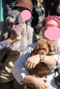 06 - コピー (3).png