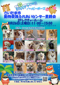 ふれあいセンターdog.jpg