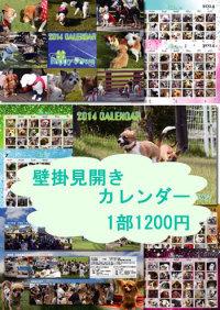 mihiraki_thumb.jpg